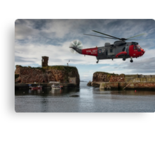Hovering over Dunbar Harbour Canvas Print