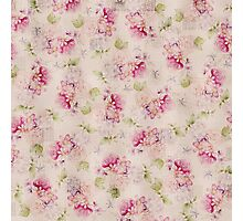 Vintage pink white green roses flowers pattern  Photographic Print
