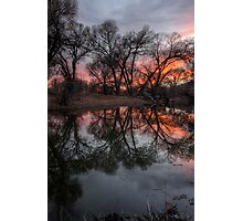 Reflect A Row Photographic Print