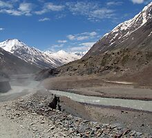 Dusty Road in Lahaul Valley by SerenaB