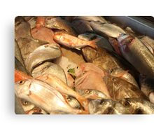 Variety of Fresh Fish Seafood on Ice Canvas Print