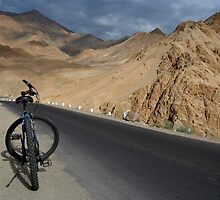 Mountain Biking down from Khardung La by SerenaB