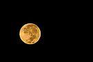 An Easter Moon by Barbara Burkhardt