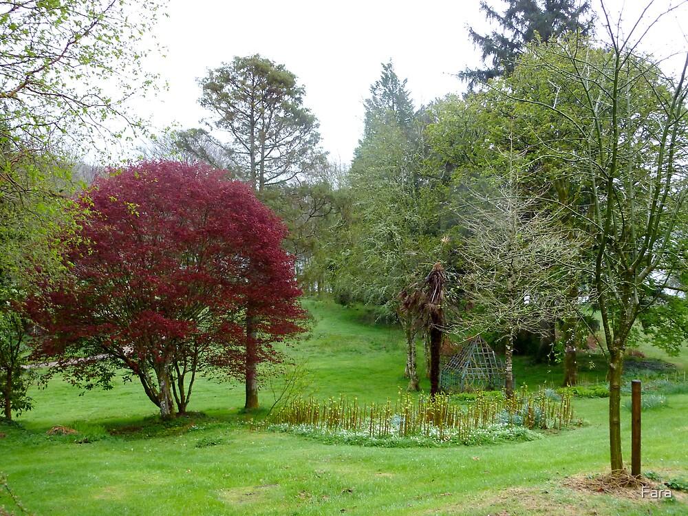 Gardens Of Glebe House by Fara