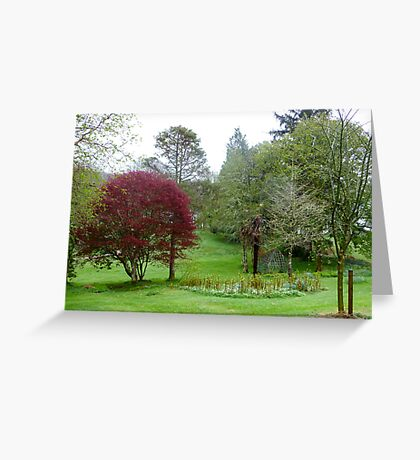 Gardens Of Glebe House Greeting Card