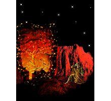 The Burning Bush Photographic Print