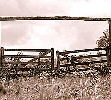 Gateway to Nowhere by Jenelle  Irvine