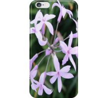Wild Garlic - A Mauve Cluster iPhone Case/Skin