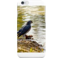 Patience Is A VIrtue iPhone Case/Skin