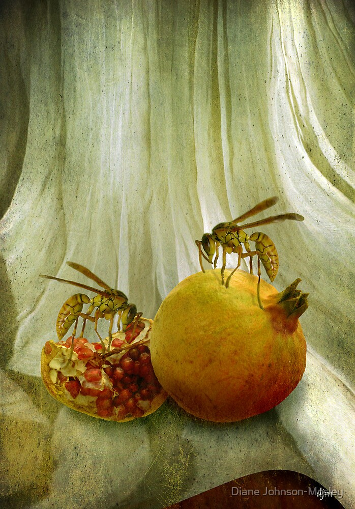 Pomegranate by Diane Johnson-Mosley
