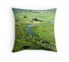 Okavango Delta Aerial Throw Pillow