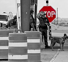 Border Check by Rebecca Dru