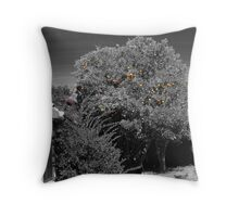 Gleaning for Oranges #1:Kathy in the tree Throw Pillow