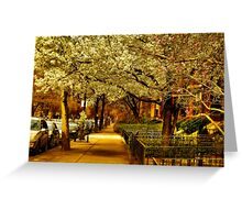 Springtime! Greeting Card
