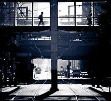 Melbourne Walker by Andrew Wilson