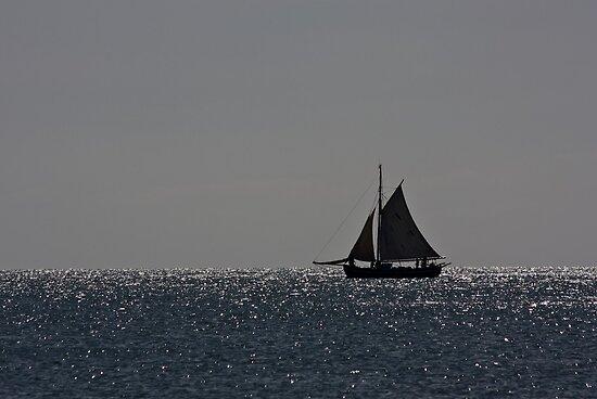 Silhouette by Christian Hartmann