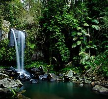 Curtis Falls, QLD by Emma  Gilette