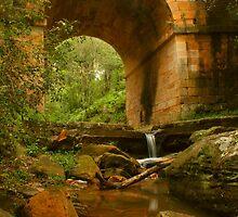 Lennox Bridge downstream by Michael Matthews