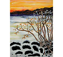 Winter day by the Lake Photographic Print