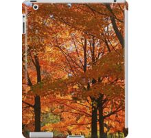 Fall sunrise!! iPad Case/Skin