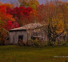 An Old Tennessee Barn in the Fall by Kellie Sharpe