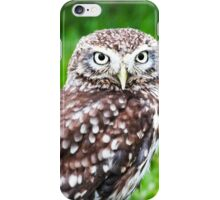 Pygmy Owl iPhone Case/Skin