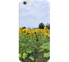 The Homestead in Color iPhone Case/Skin