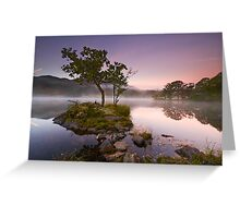 The Rydal Tree Greeting Card