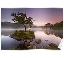 The Rydal Tree Poster