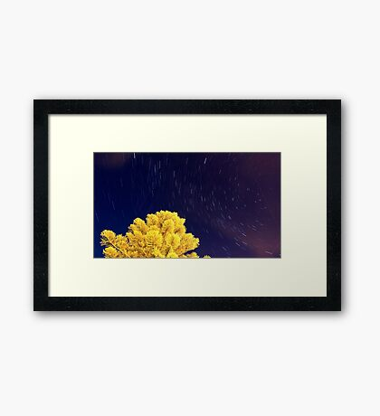 5th April 2012 Framed Print
