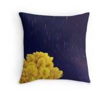 5th April 2012 Throw Pillow