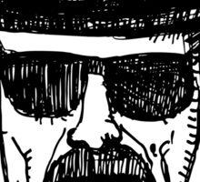 Heisenberg I am the danger Sticker