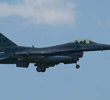 FM AF 88 0410 F-16C Fighting Falcon Approach by Henry Plumley