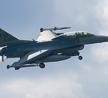 FM AF 86 0053 F-16D Fighting Falcon Approach by Henry Plumley