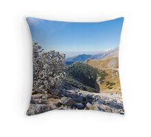 ice in the morning Throw Pillow