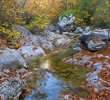 In Paklenica by Ivan Coric
