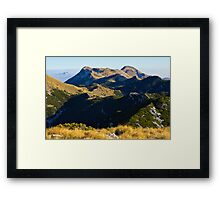 A view to the top Framed Print