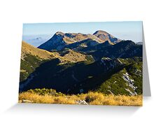 A view to the top Greeting Card