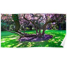 The Garden Tree Poster