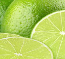 Sliced fresh limes Sticker