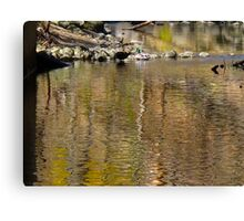Fowl Play Canvas Print