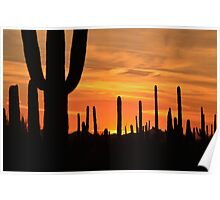 Sundown Tucson  Poster