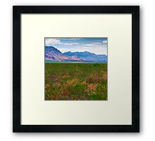 The Foothills Framed Print