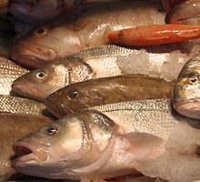 Variety of Fresh Fish Seafood on Ice 2 by taiche