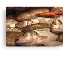 Variety of Fresh Fish Seafood on Ice 2 Canvas Print