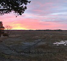 Sunset in Ct. by CJ Fuchs