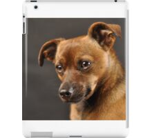 Little Heidi iPad Case/Skin
