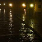 Canal walk (2) by eddiechui