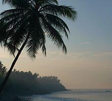 Palm Trees and Varkala Beach by SerenaB