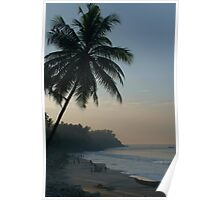 Palm Trees and Varkala Beach Poster